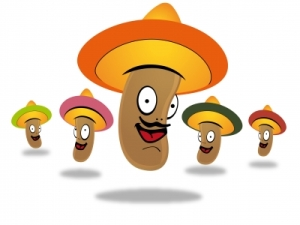 mexican-beans-by-danilo-rizzuti-freedigitalphotos-net1